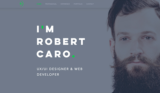 Design website templates – UX/UI-designer CV