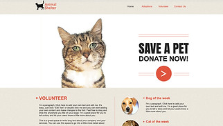 Non-Profit website templates - Animal Shelter