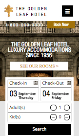Hotels & B&Bs website templates –  Luxury Urban Hotel