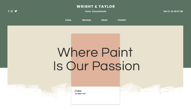 Business template – Esperti di colori