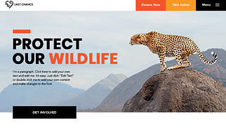 Non-Profit website templates - Wildlife Conservation
