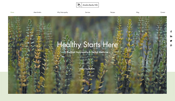Gezondheid en wellness website templates – Naturopath