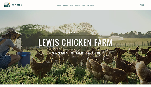 Jídlo a pití website templates – Chicken Farm