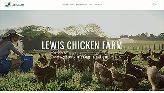 Food & Drinks website templates - Chicken Farm