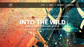 Visual Arts website templates - The Artist