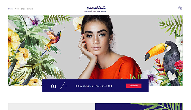 Gesundheit & Wellness website templates – Naturkosmetik-Shop
