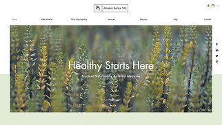 Health website templates - Naturopath
