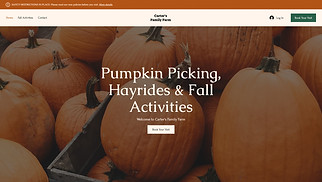 All website templates - Pumpkin Patch