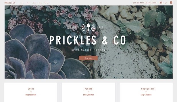 Thuis en decor website templates – Boetiek-plantenwinkel