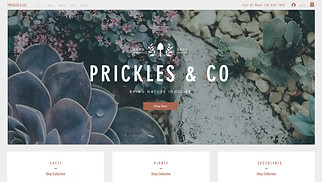 Online Store website templates - Plant Boutique
