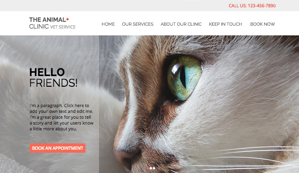 Business template – Clinica per animali