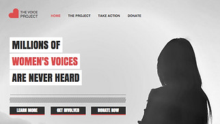 Non-Profit website templates - Community Action Group