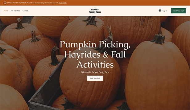 Novo website templates – Pumpkin Patch